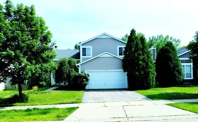 4455 W Swallowtail Drive, Waukegan, IL 60085 (MLS #10950441) :: Jacqui Miller Homes