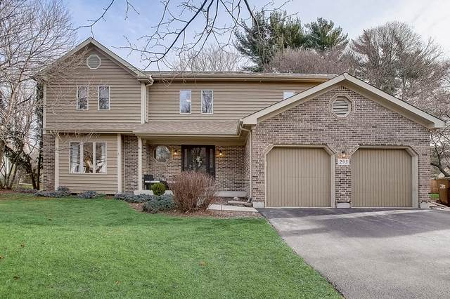 293 Lorraine Drive, Crystal Lake, IL 60012 (MLS #10950941) :: Lewke Partners