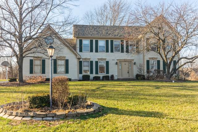 20518 Laurel Drive, Deer Park, IL 60010 (MLS #10951456) :: Suburban Life Realty