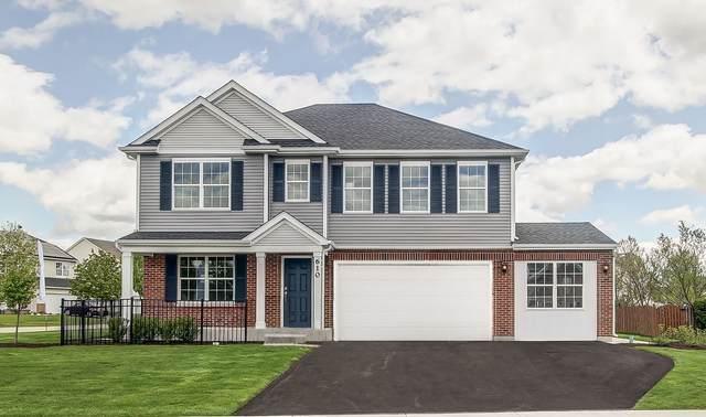 3509 Silver Falls Court, Joliet, IL 60431 (MLS #10951566) :: Schoon Family Group