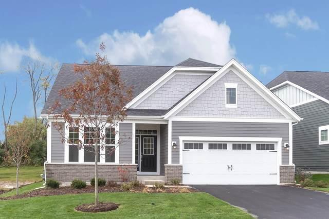 23800 N. Muirfield Lot #15 Drive, Kildeer, IL 60047 (MLS #10951899) :: Jacqui Miller Homes