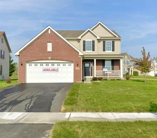 1207 Goldfield Lane, Joliet, IL 60431 (MLS #10952670) :: John Lyons Real Estate