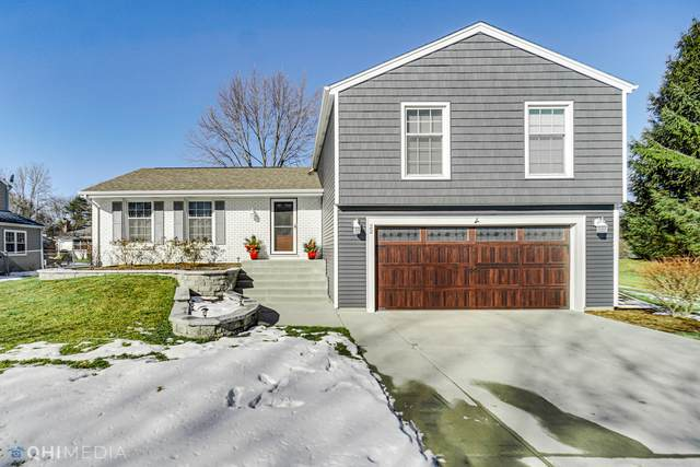 22 Warrington Road, Vernon Hills, IL 60061 (MLS #10953123) :: Schoon Family Group
