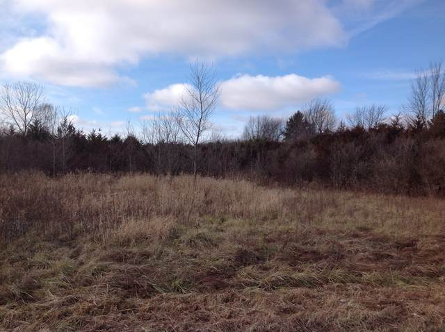 vacant State Line Road Road, Beecher, IL 60401 (MLS #10953470) :: Jacqui Miller Homes
