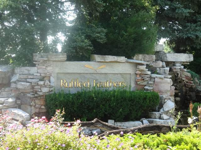 48 Ruffled Feathers Drive, Lemont, IL 60439 (MLS #10953821) :: Jacqui Miller Homes