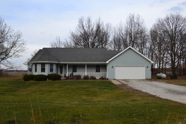 12501 W 3000N Road, Bonfield, IL 60913 (MLS #10954277) :: The Dena Furlow Team - Keller Williams Realty