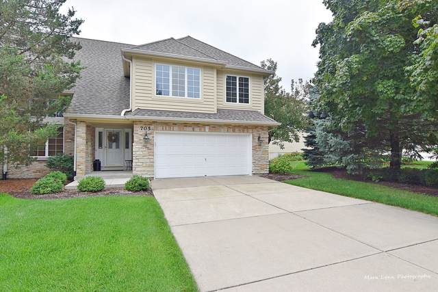 705 Manor Hill Place, Sugar Grove, IL 60554 (MLS #10954325) :: Janet Jurich