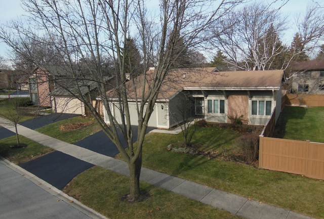 542 Bryce Trail, Roselle, IL 60172 (MLS #10954668) :: Jacqui Miller Homes
