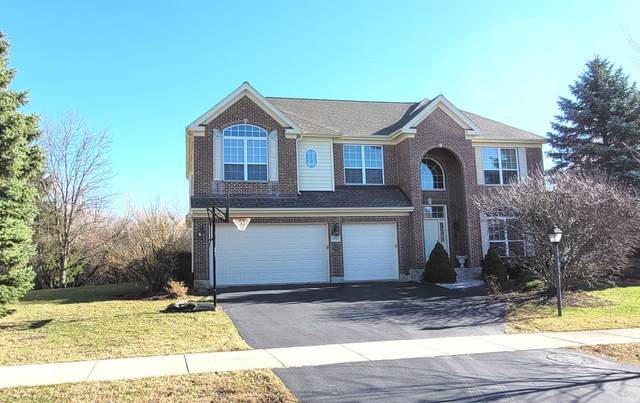 1355 S Parkside Drive, Palatine, IL 60067 (MLS #10954950) :: Schoon Family Group