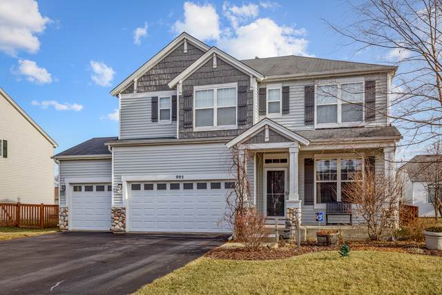 995 Christine Lane, Antioch, IL 60002 (MLS #10955055) :: Jacqui Miller Homes