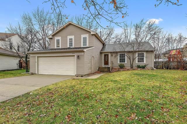 1024 Walden Court, Bolingbrook, IL 60440 (MLS #10955140) :: Jacqui Miller Homes