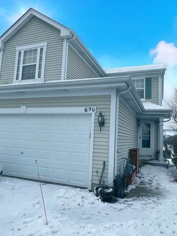 620 Prairie View Drive, Minooka, IL 60447 (MLS #10955142) :: Suburban Life Realty