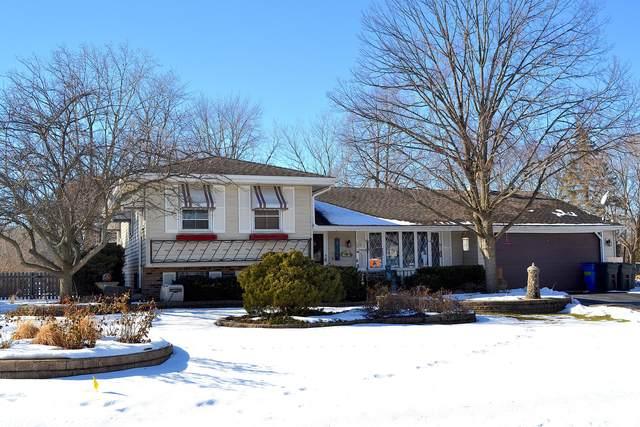 3N114 Springvale Road, West Chicago, IL 60185 (MLS #10955188) :: Jacqui Miller Homes