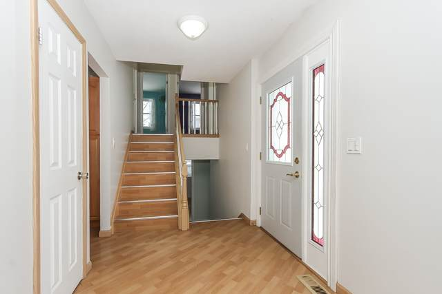 1038 Tennessee Lane, Elk Grove Village, IL 60007 (MLS #10955224) :: Jacqui Miller Homes