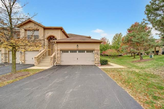 1995 Crenshaw Circle, Vernon Hills, IL 60061 (MLS #10955668) :: The Spaniak Team