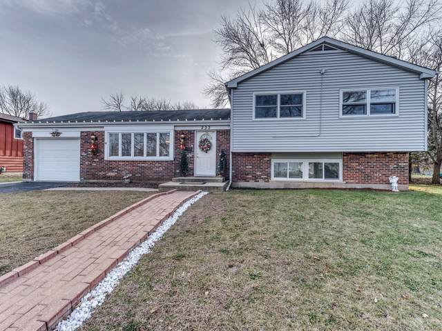 233 Dartmoor Drive, Crystal Lake, IL 60014 (MLS #10956589) :: John Lyons Real Estate
