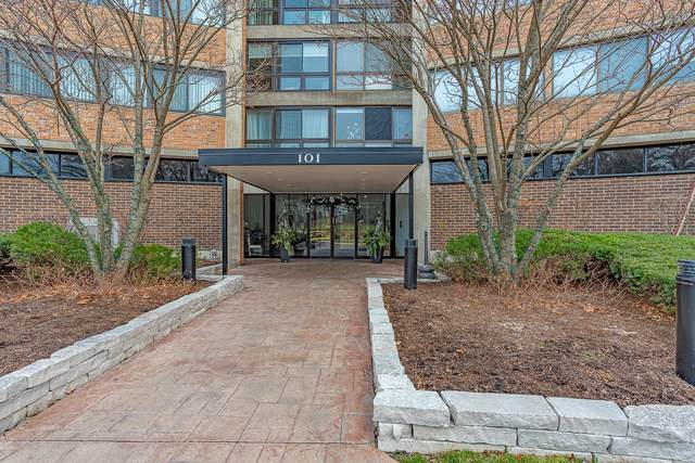 101 Bar Harbour Road 6B, Schaumburg, IL 60193 (MLS #10956732) :: The Wexler Group at Keller Williams Preferred Realty