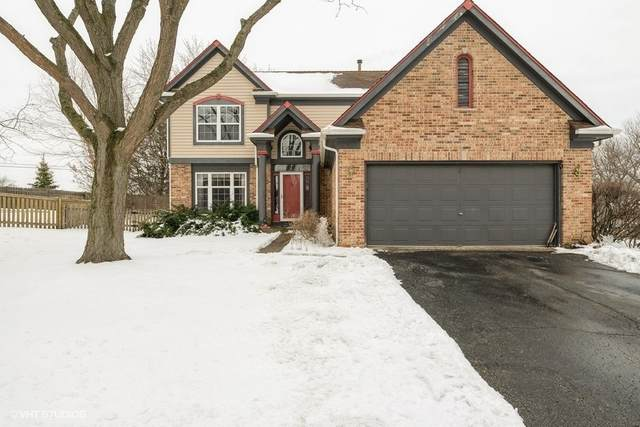 352 Fairfax Lane, Grayslake, IL 60030 (MLS #10957208) :: Jacqui Miller Homes