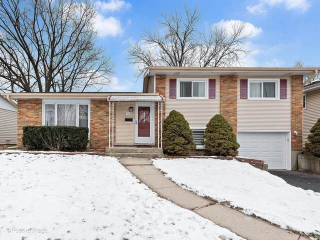 729 Magnolia Circle, Lombard, IL 60148 (MLS #10957446) :: The Wexler Group at Keller Williams Preferred Realty