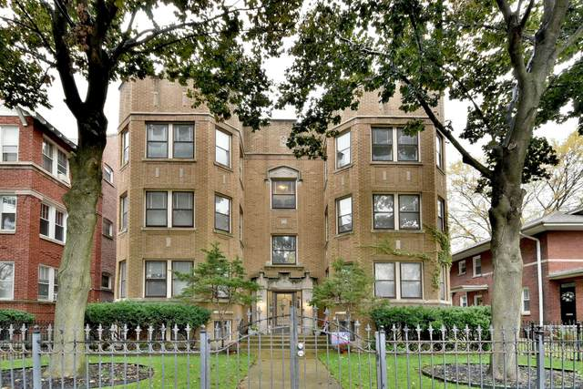 126 N Austin Boulevard 2N, Oak Park, IL 60302 (MLS #10958039) :: The Wexler Group at Keller Williams Preferred Realty