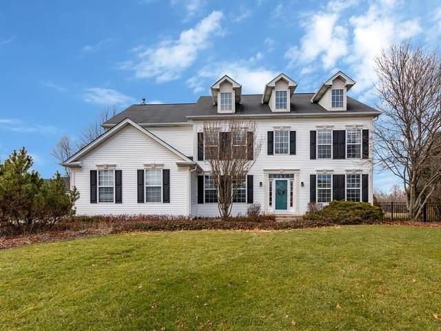 974 Pimlico Lane, Bartlett, IL 60103 (MLS #10958176) :: Jacqui Miller Homes
