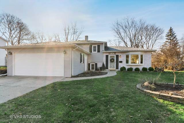 1082 Sussex Lane, Wheaton, IL 60189 (MLS #10958622) :: The Dena Furlow Team - Keller Williams Realty