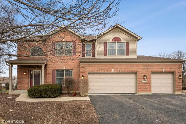 759 Woodland Drive, Antioch, IL 60002 (MLS #10958714) :: The Dena Furlow Team - Keller Williams Realty