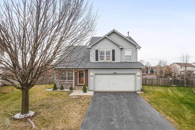286 Traverse Court, Romeoville, IL 60446 (MLS #10958749) :: Schoon Family Group
