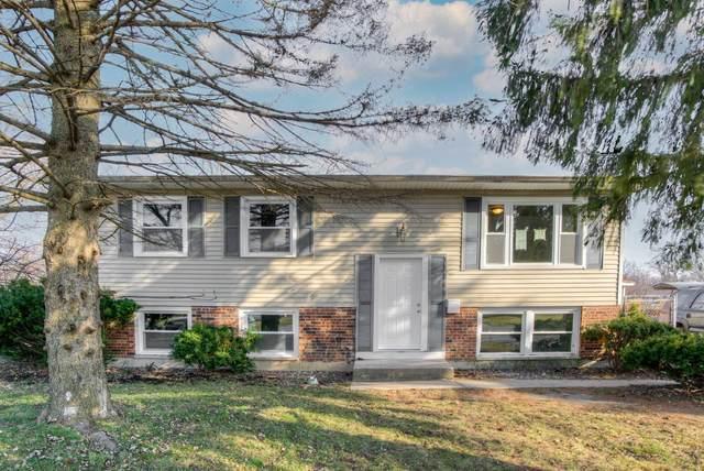 17201 Springtide Lane, Hazel Crest, IL 60429 (MLS #10958818) :: Schoon Family Group