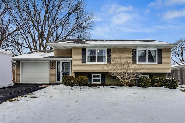 533 Forestway Drive, Buffalo Grove, IL 60089 (MLS #10959222) :: Helen Oliveri Real Estate