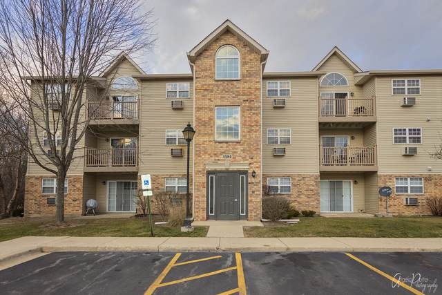 1584 W Crystal Rock Court 1D, Round Lake Beach, IL 60073 (MLS #10959409) :: The Wexler Group at Keller Williams Preferred Realty