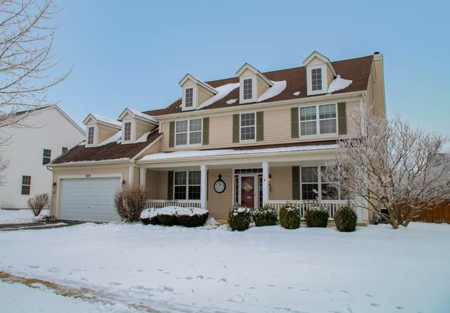 707 Keene Avenue, Oswego, IL 60543 (MLS #10959563) :: Schoon Family Group