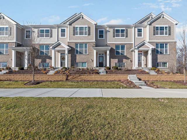 24 E Heritage Court 2-6, Arlington Heights, IL 60004 (MLS #10959575) :: RE/MAX IMPACT