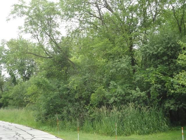 3N615 Oak Lane Drive, Bensenville, IL 60106 (MLS #10960332) :: Janet Jurich