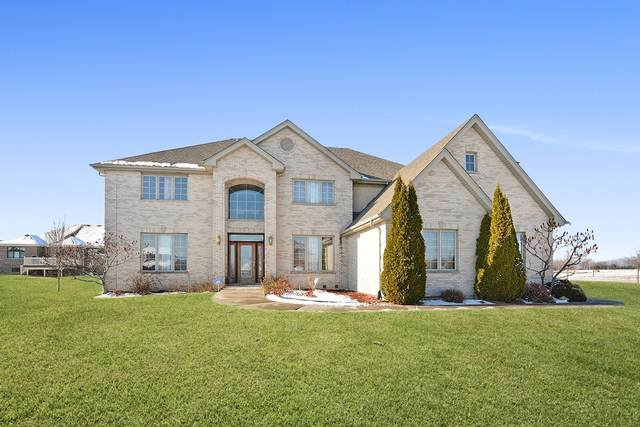 21230 Coneflower Drive, Mokena, IL 60448 (MLS #10960354) :: Schoon Family Group