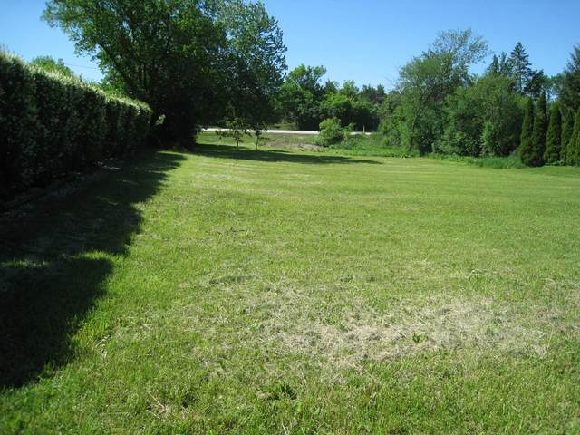 19 Devonshire Drive, Oak Brook, IL 60523 (MLS #10960725) :: Jacqui Miller Homes
