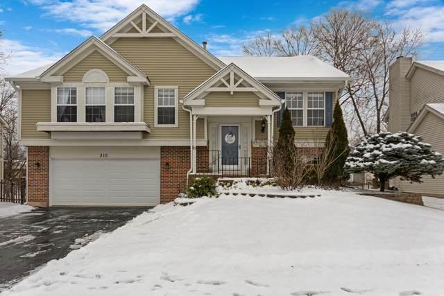 310 Meadow Lakes Boulevard, Aurora, IL 60504 (MLS #10960846) :: Jacqui Miller Homes