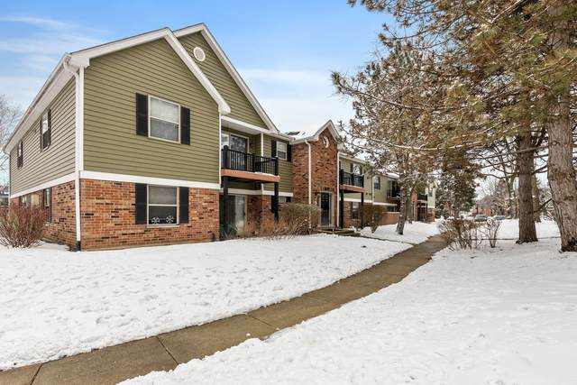 1577 Raymond Drive #204, Naperville, IL 60563 (MLS #10960848) :: The Wexler Group at Keller Williams Preferred Realty