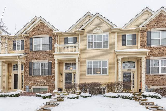 1561 Sandcastle Lane, Pingree Grove, IL 60140 (MLS #10961436) :: Jacqui Miller Homes