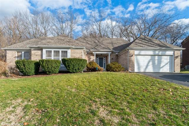 840 Tam O Shanter Court, Bolingbrook, IL 60440 (MLS #10961456) :: Janet Jurich