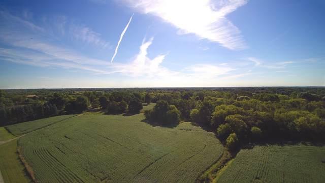 25448 N Gilmer Road, Hawthorn Woods, IL 60047 (MLS #10961508) :: Helen Oliveri Real Estate