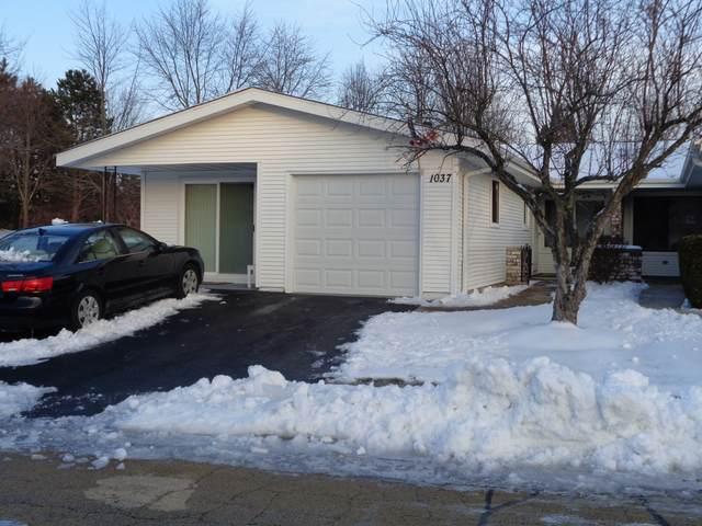 1037 Mohegan Lane, Schaumburg, IL 60193 (MLS #10961608) :: Jacqui Miller Homes