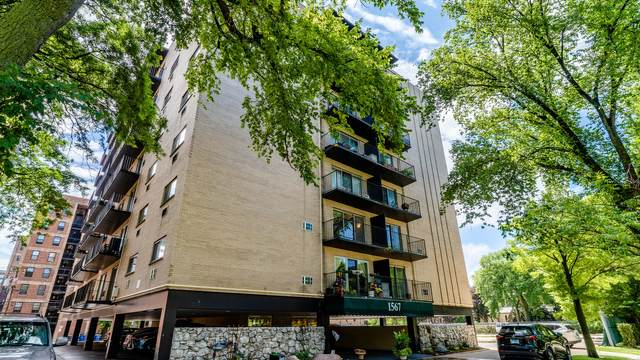 1567 Ridge Avenue #201, Evanston, IL 60201 (MLS #10961660) :: Jacqui Miller Homes