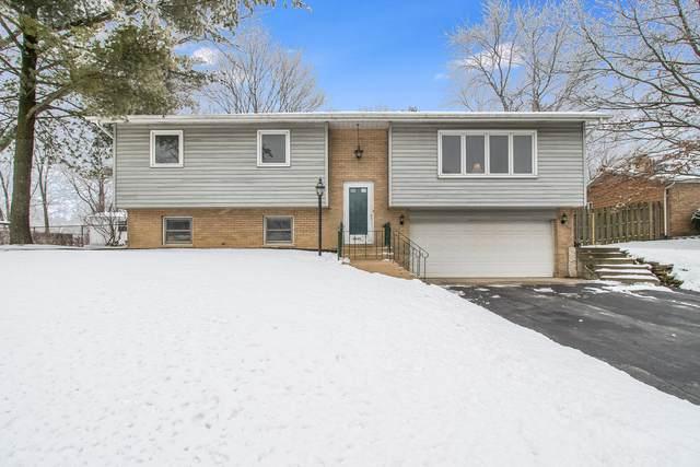 12245 W Josephine Drive, Mokena, IL 60448 (MLS #10961745) :: Jacqui Miller Homes