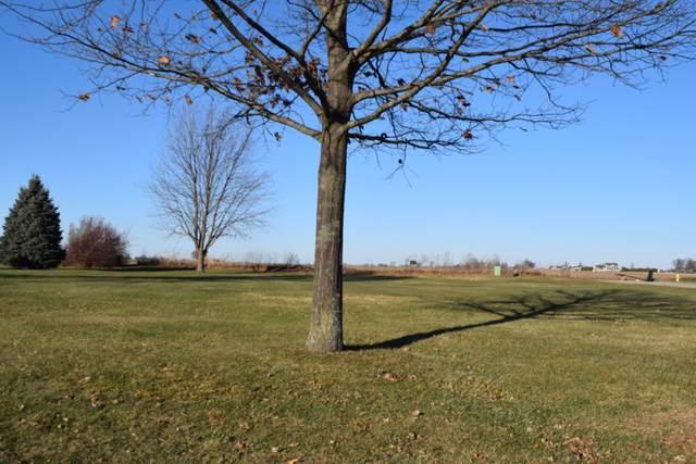 1123 Whitetail Lane, Sandwich, IL 60548 (MLS #10961799) :: Jacqui Miller Homes