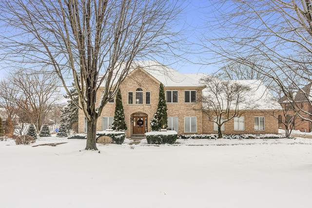 55 Deer Point Drive, Hawthorn Woods, IL 60047 (MLS #10962235) :: Helen Oliveri Real Estate