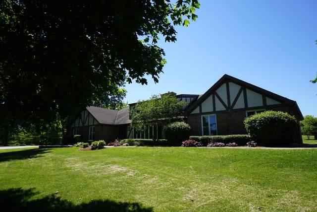 709 Skye Lane, Inverness, IL 60010 (MLS #10962319) :: John Lyons Real Estate