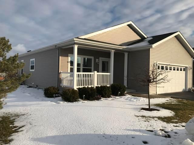 95 Rocking Horse Lane, Grayslake, IL 60030 (MLS #10962362) :: Janet Jurich