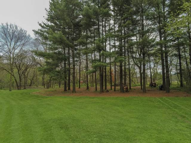 Lot 9 Sauk Trail, Oregon, IL 61061 (MLS #10962590) :: Suburban Life Realty