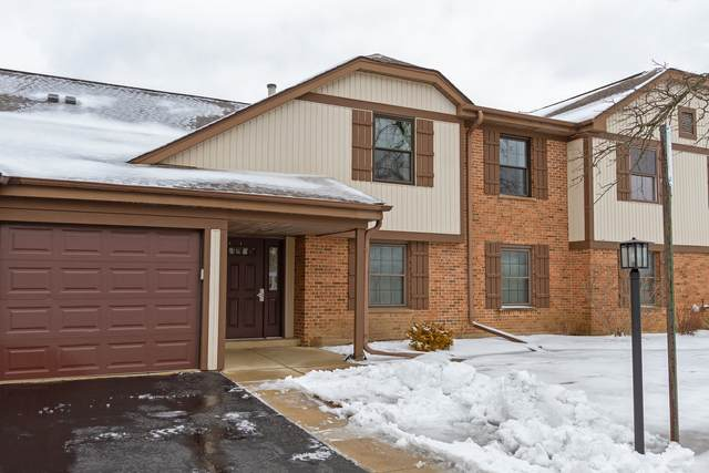 1232 Plum Tree Court B2, Schaumburg, IL 60193 (MLS #10962664) :: Janet Jurich